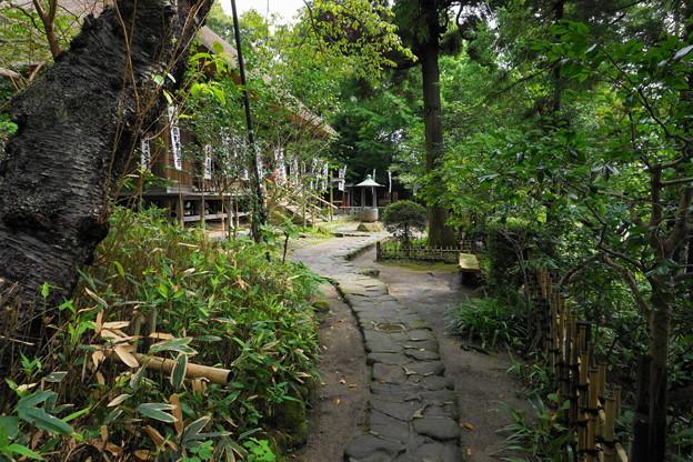 180911_63_脇の階段で観音堂へ・S1650・α60(杉本寺) (4)