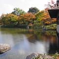 Photos: 181108_05_日本庭園の様子・スローシャッター・S18200・α60(昭和記念) (61)