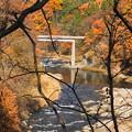 181111_F17_向こうに橋が・スロー・S18200・α60(吹き割の滝) (1)