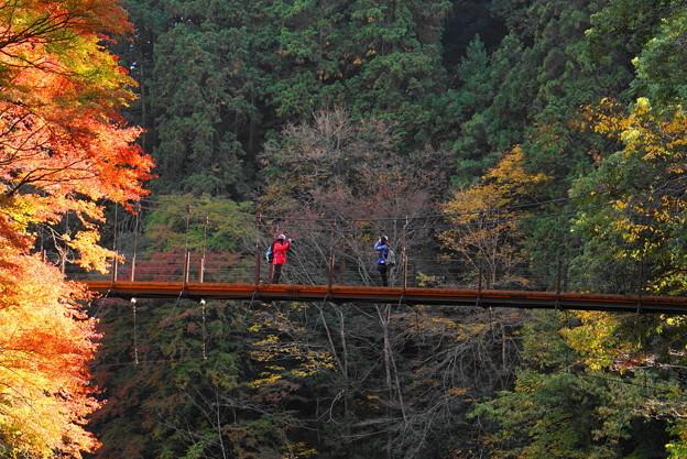 181116_14_氷川小橋と人影・S18200・α60(多摩川)(35)