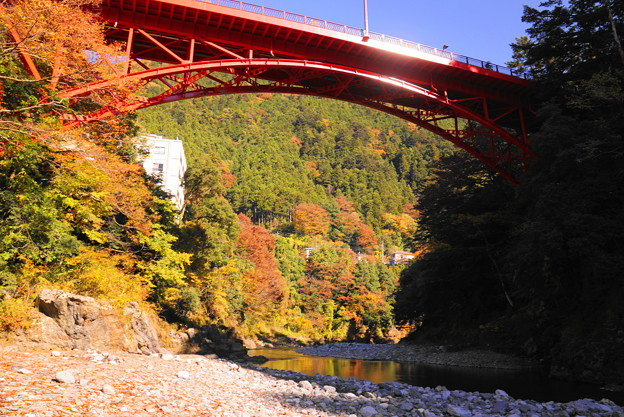 181115_18_昭和橋方面の様子・S18200・α60(氷川渓谷) (5)
