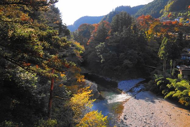 181115_32_昭和橋から上流を・S18200・α60(奥多摩) (3)