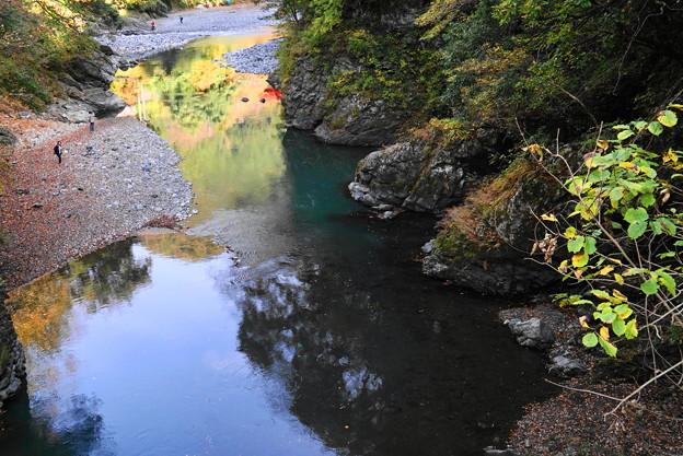 181116_12_登計橋から下流を・S18200・α60(多摩川) (4)