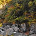 181116_53_鳩ノ巣小橋の下流・S18200・α60(鳩ノ巣渓谷) (3)