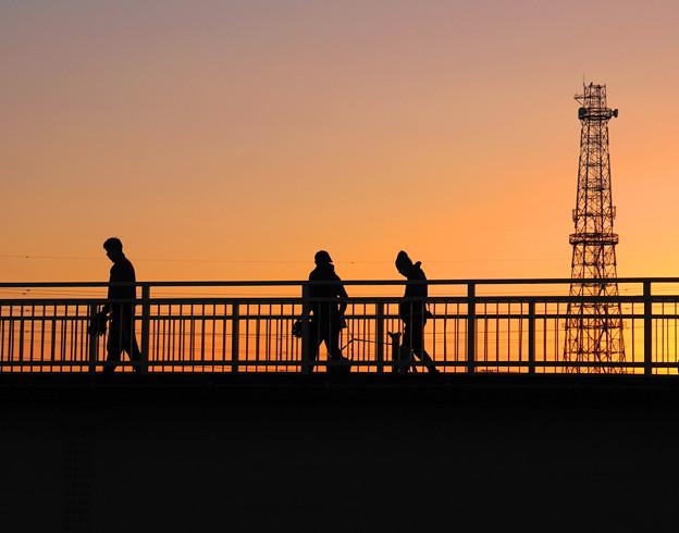 190101_72T_夕景を歩く・S18200・α60(鶴見川) (8)