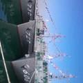 写真: 本日の四日市港。現役最古参と最新艇の並び