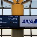 ANA347便