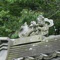 写真: 明月院の本堂の屋根