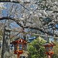新倉富士浅間神社
