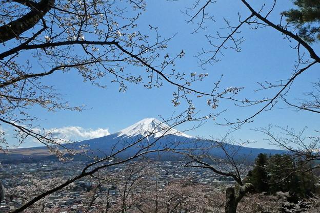 忠霊塔から見た富士山