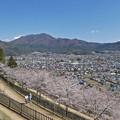 Photos: 忠霊塔から見た景色