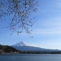 河口湖からみた富士山