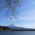 Photos: 河口湖からみた富士山