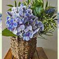 Photos: 紫陽花とグリーンの花束