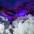 写真: 氷のオブジェ