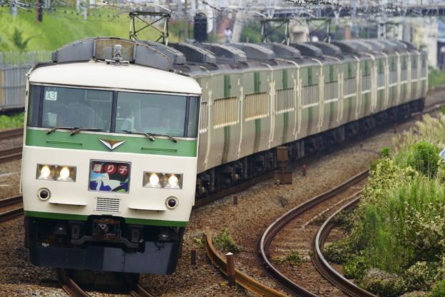 185系・踊り子115号(3035M)(7)