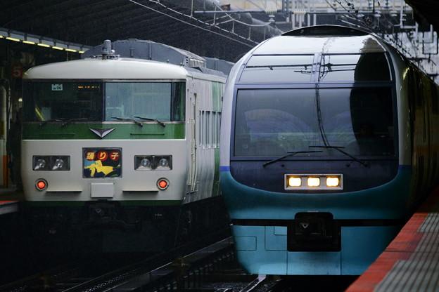 踊り子・スーパービュー踊り子横浜駅並び