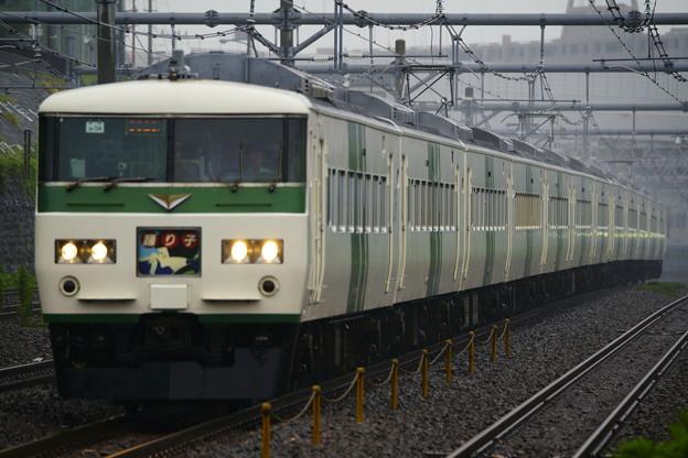 185系・踊り子109号(8029M)(2)