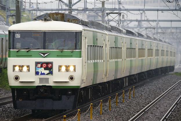 185系・踊り子107号(3027M)(3)