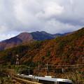 Photos: 383系・急行中山道トレイン(4)