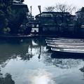 写真: 水郷柳川