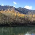 上高地の秋