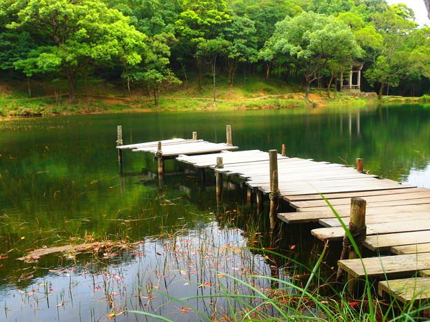 Photos: 夢湖