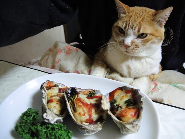 牡蠣に舌鼓
