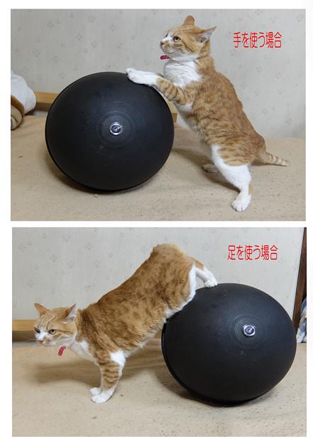 球形スピーカーの転がし方