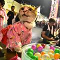 Photos: 大満足!