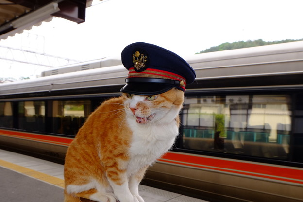 「中津川方面、列車が参ります。」