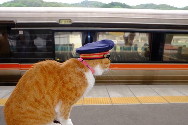 列車、発車いたします。
