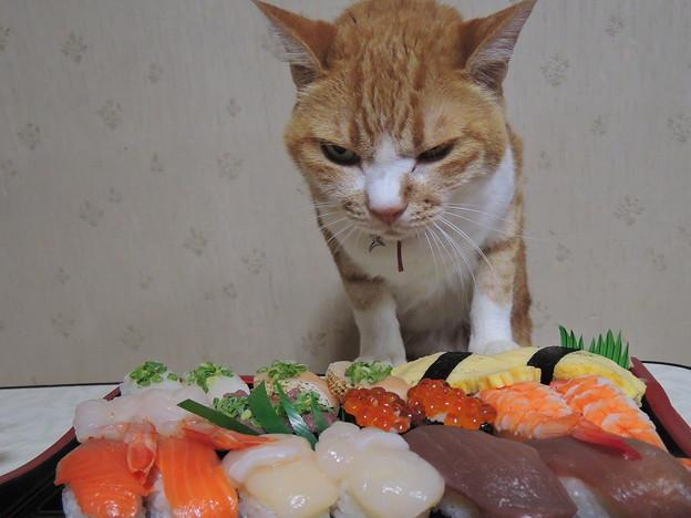 寿司食いね~!