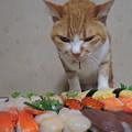 Photos: 寿司食いね~!