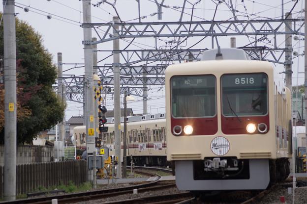 DSC05570
