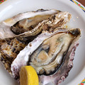 写真: おつまみ冷製蒸し牡蠣