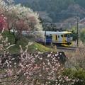 写真: E257ホリデー快速富士山