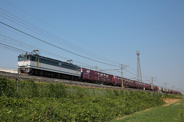 EF65-2117 74レ