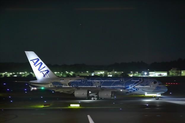 Photos: A380 フライングホヌ