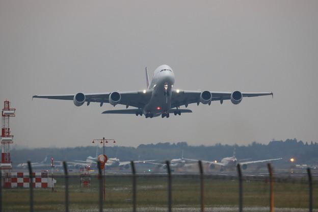 Photos: タイ航空 A380