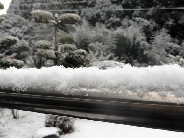 物干し竿に雪