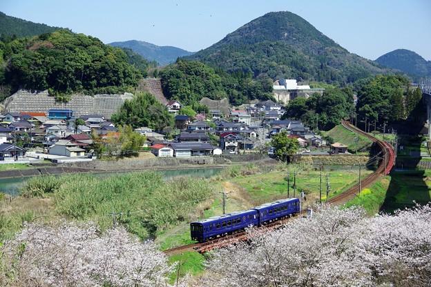 お花見列車