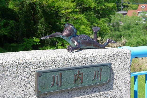 センデガラッパ(川内カッパ)a