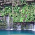 雄川の滝 c