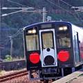 くまモン列車