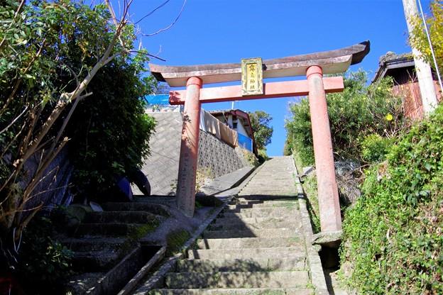 霧島神社参道