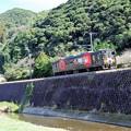 くまモン列車 a