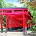 赤いトンネル a