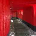 赤いトンネル b