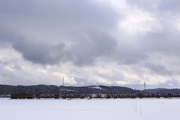 写真: 雪中の貨物